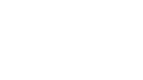 The Curious Mindset Identity